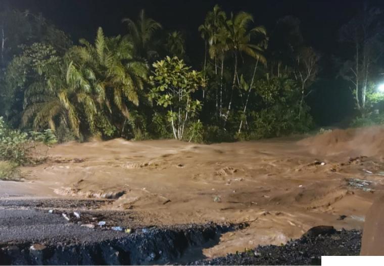 Banjir di Kecamatan Pangkalan Koto Baru, Kamis (29/04/2021) juga membawa dampak rusak parahnya lahan persahawan warga pada tiga jorong di Nagari Koto Alam, Kecamatan Pangkalan Koto Baru, Kabupaten Limapuluh Kota. IST