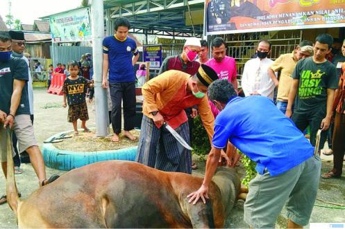 Kapolres Solok Kota AKBP. Ferry Suwandi, SIK menyembelih sapi kurban di Masjid Al-Kautsar Komplek Polres Solok Kota, Jumat (31/07). JON