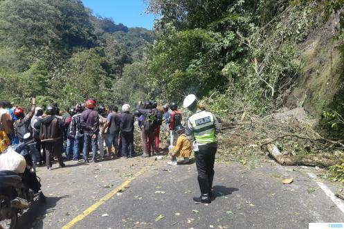 Suasana pembersihan material longsor dan pohon yang tumbang. Senin (24/02/2020) pukul 12.00 jalan sudah mulai dibuka dengan sistem buka tutup.