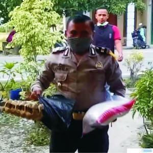 KapolsekJunjung Sirih Iptu Satrialis, SH mengantarkan langsung bantuan untuk warga dhuafa, Kamis (09/04/2020). JON