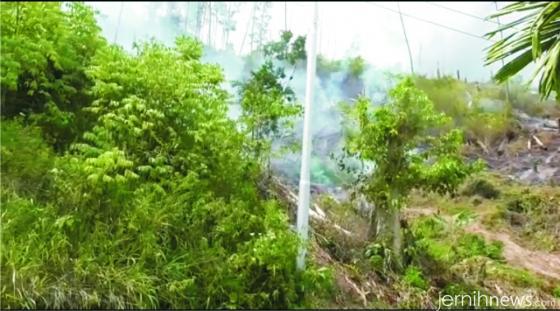 Asap kebakaran hutan masih mengepul. M. ABDIO